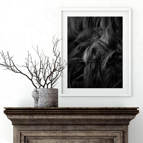 Schwarze Federn Einzelposter (H050)