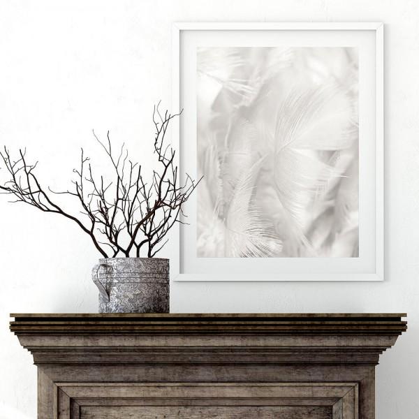 Weiße Federn Einzelposter (H051)